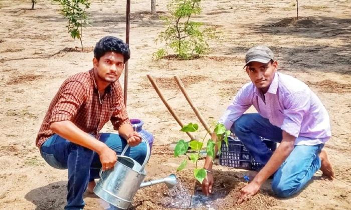Brothers Planting Of 5000 Saplings In 48 Hours-TeluguStop.com