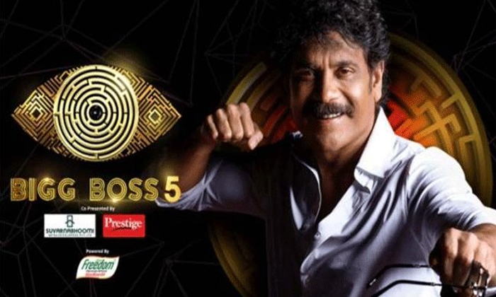 Bigg Boss 5 Telugu Winner Declared Google Details Inside-TeluguStop.com