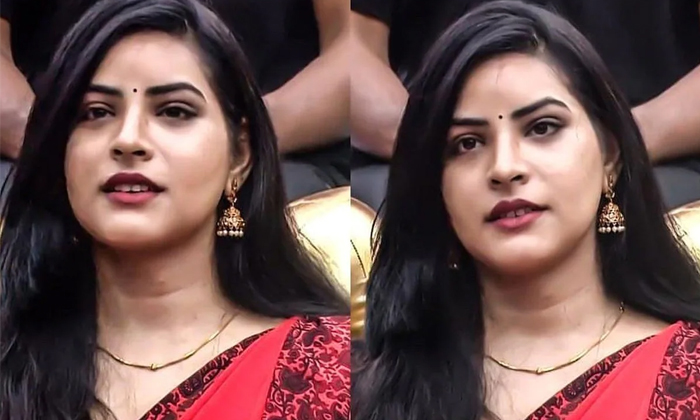 Priyanaka Reveals Her Emotional And True Love Story In Bigg Boss House-TeluguStop.com