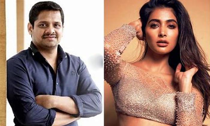 Bunny Vasu Believes In Pooja Hegde Beauty-TeluguStop.com