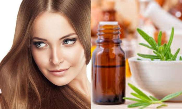 These Natural Oils Help To Reduce Hair Problems-TeluguStop.com
