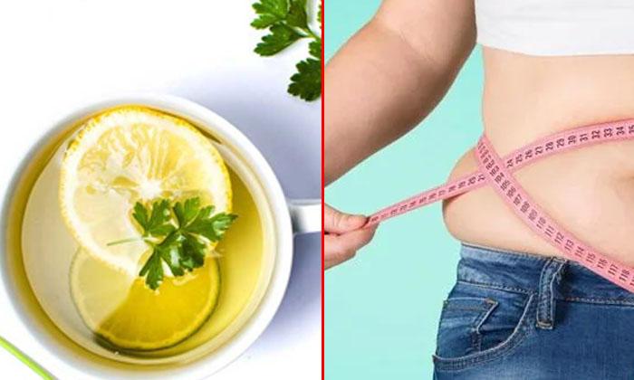 Wonderful Health Benefits Of Parsley Tea-TeluguStop.com