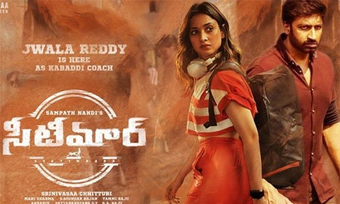 Seetimaarr Movie Is Near To Break Even Collection-TeluguStop.com
