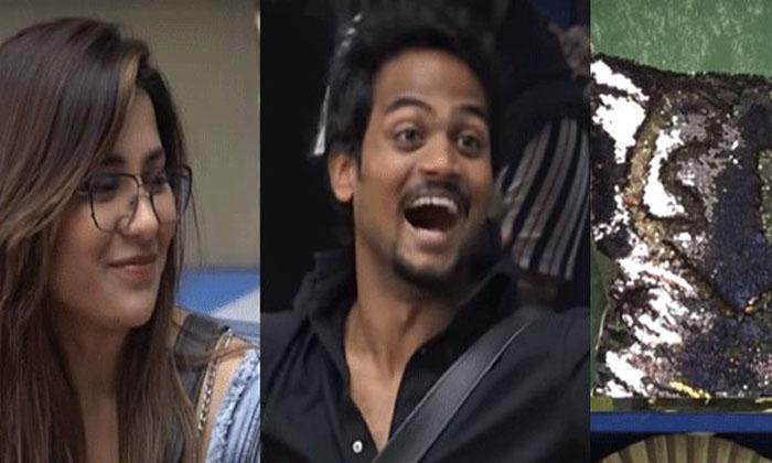Biggboss5 11th Day Highlights Umadevi Comments On Shanmukh Siri Next Captain Winner Viswa-TeluguStop.com