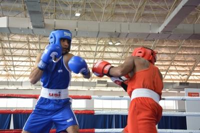 Shiva Thapa Storms Into Semis At Elite Men's National Boxing-TeluguStop.com