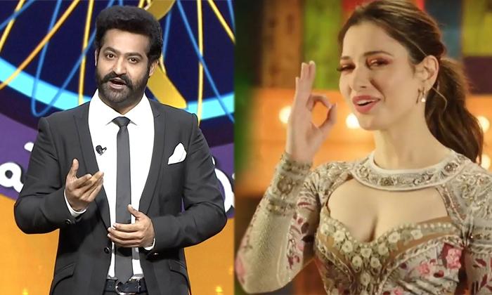 Worst Trp Ratings For Tarak Show Evaru Meelo Koteeswarulu-TeluguStop.com