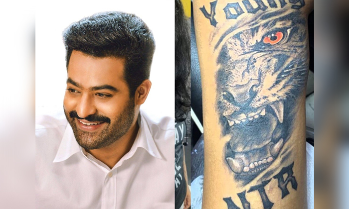 Young Tiger Ntr Tattoo On Girl Fan Hand-TeluguStop.com