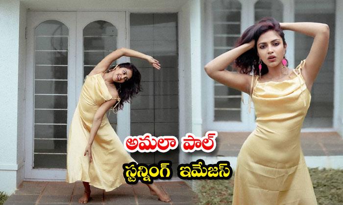 Actress Amala Paul Glamorous Pics-అమలా పాల్స్టన్నింగ్ ఇమేజస్