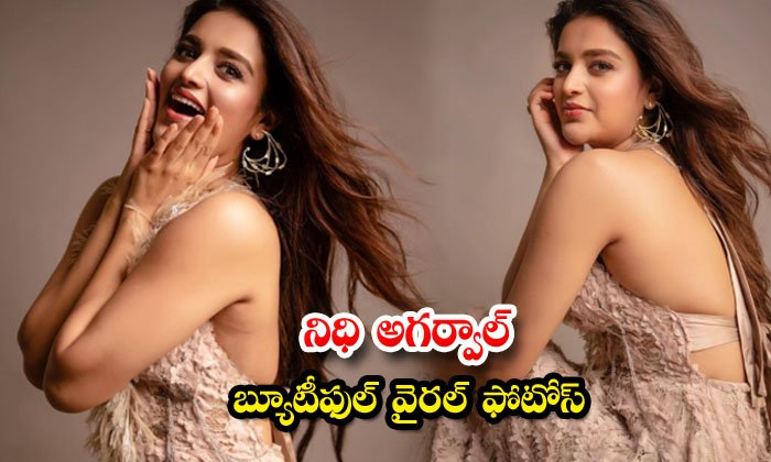 Actress Nidhhi Agerwal raises the hotness quotient in these pictures-నిధి అగర్వాల్ బ్యూటీఫుల్ వైరల్