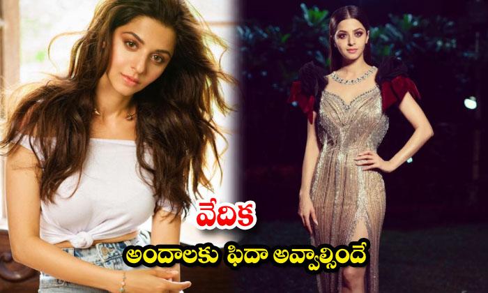 Glamorous Actress Vedhika beautiful latest images-వేదిక అందాలకు ఫిదా అవ్వాల్సిందే
