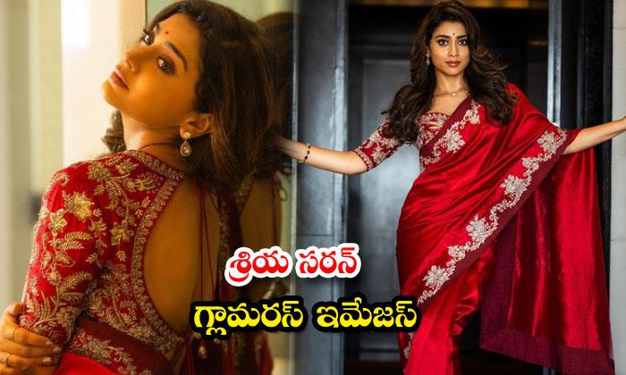 Tollywood Actress Shriya Saran sensational pictures-శ్రియ సరన్ గ్లామరస్ ఇమేజస్