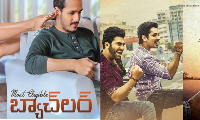 Maha Samudram Vs Bachelor Movie Dasara Boxoffice Fight-TeluguStop.com